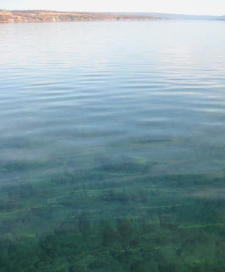 Finger Lakes swimming holes