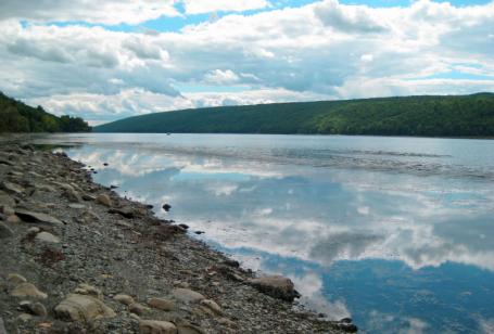 Finger Lakes Summer