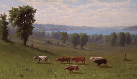 Pastoral Scene in the Finger Lakes