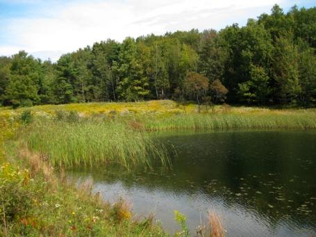 Wesley Hill Nature Preserve