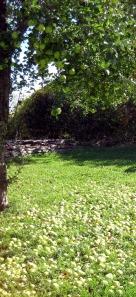 Elderberry Ponds