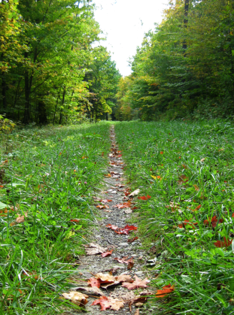 Canadice Hiking Trail