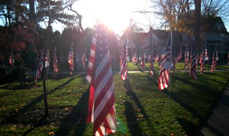 Veteran's Day Display, Skaneateles New York