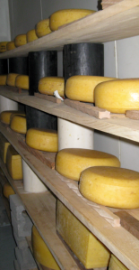 Finger lakes cheese trail