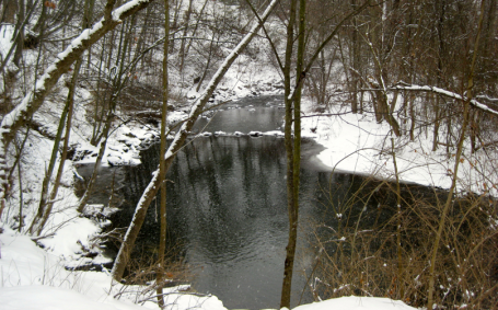 Allens Creek runs through the park