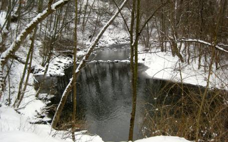 Allens Creek runs through the park