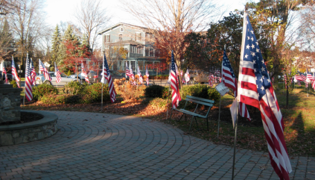 Veteran's Day Display